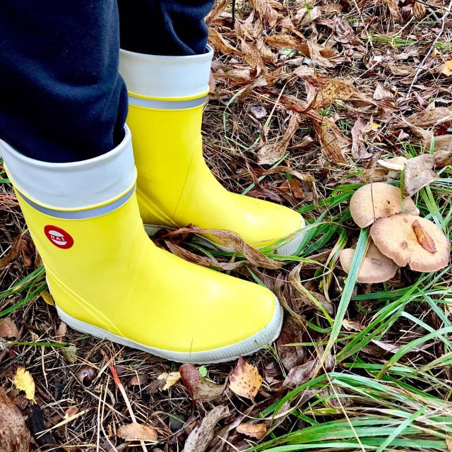 Keltaiset saappaat syksyisessä metsässä